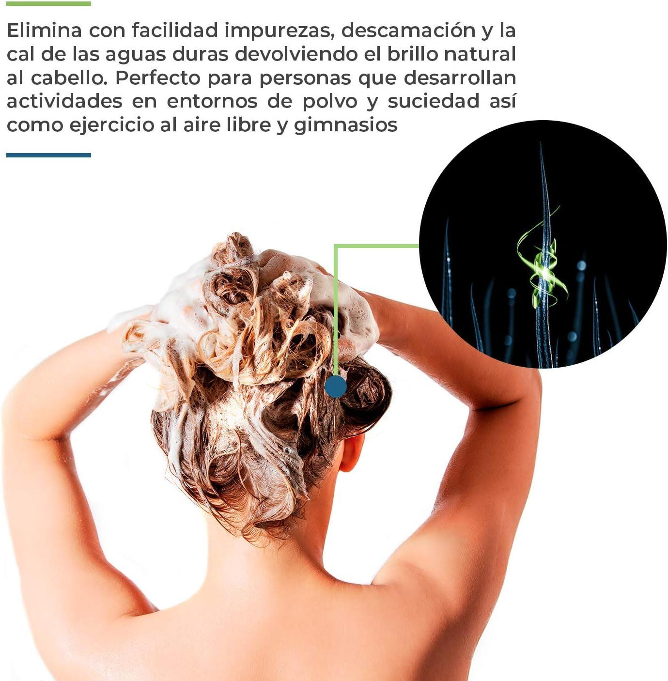 Champú Natural Hidratante Fortifizante Con Camomila | Sin Sulfatos, Parabenos y Siliconas | Para el Cabello de Hombres y Mujeres | Sin Detergentes Ni ...