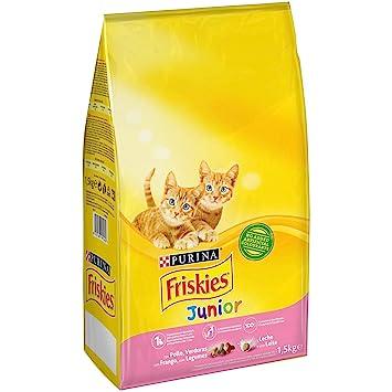 Purina Friskies Junior Pienso para Gato hasta 1 año 1,5 Kg: Amazon.es: Amazon Pantry