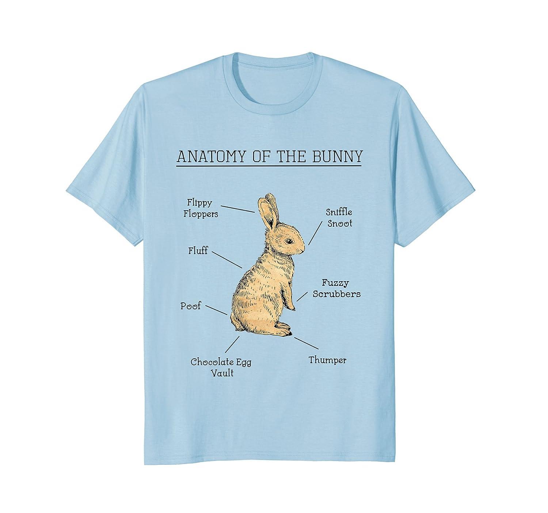 Amazon.com: Anatomy Of The Bunny Cute Animal Love Rabbit Easter ...