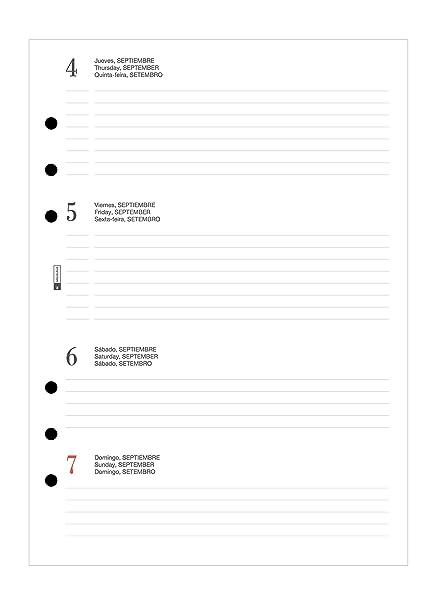 Miquelrius 24000 - Agenda anualidad plus semana vista horizontal 2019