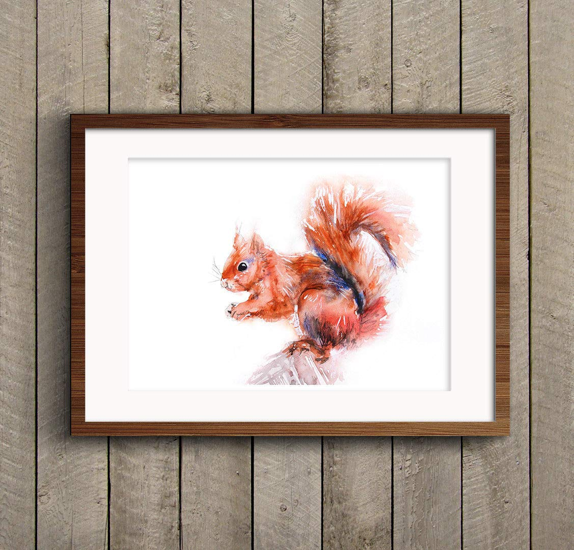 Fine Art Print of My Original Red Squirrel Watercolour Painting Signed A3 A4 Wildlife Animal