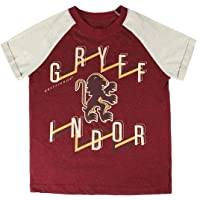 Cerdá - Harry Potter | Camiseta Hogwarts para Niños - 100% Algodon