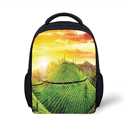 d26d93060f5f Amazon.com: iPrint Kids School Backpack Modern,View of Fields in the ...