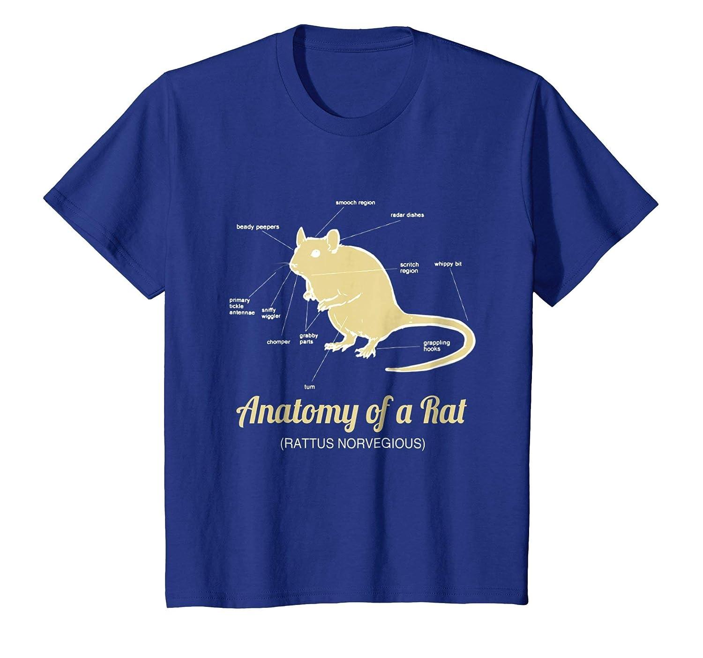Amazon Anatomy Of Pet Rat T Shirt Clothing