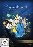 Aquarium 4K UHD Edition (gedreht in 4K Ultra High Definition)