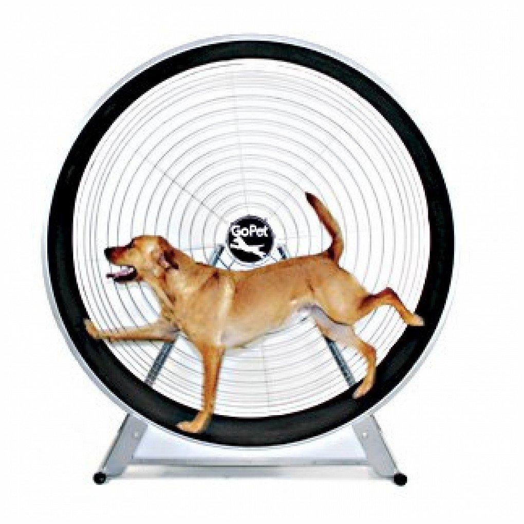 GoPet GoPet TreadWheel For Large Dogs CS6018