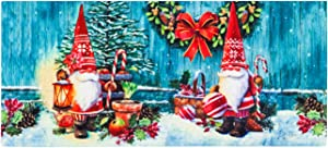 Evergreen Flag Beautiful Winter Christmas Gnome Sassafras Switch Doormat - 22 x 1 x 10 Inches Fade and Weather Resistant Outdoor Floor Mat for Homes, Yards and Gardens