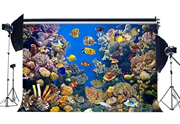 SUNNY Star 9 x 6ft disfraz de telón de fondo mundo submarino acuario corales peces verano