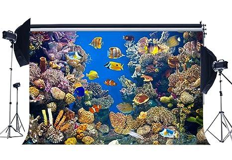 SUNNY Star 9 x 6ft disfraz de telón de fondo mundo submarino acuario corales peces verano ...