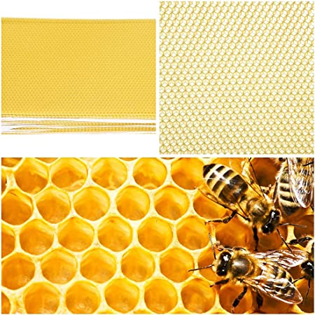 BEE KEEPING  BEES  WAX SUPPORT PINS  X 1 Kg    EASY  HONEYCOMB   FOUNDATION PINS