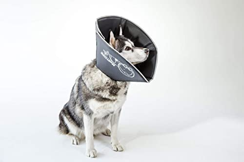 The-Original-Comfy-Cone,-Soft-Pet-Recovery-Collar-with-Removable-Stays