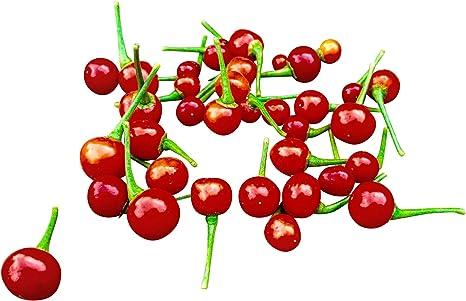 Red Charapita 10 Seeds by Samenchilishop