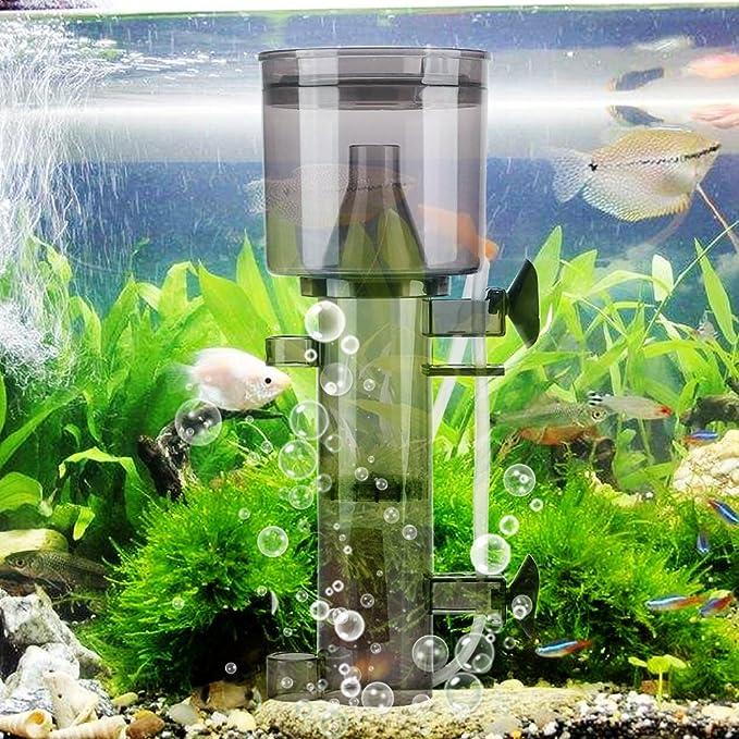 Skimmer de Proteína de Acuario Colgando de Bomba Filtro de Agua Filtro de Tanque de Agua Interna para Acuario Marino(RS-4002): Amazon.es: Hogar