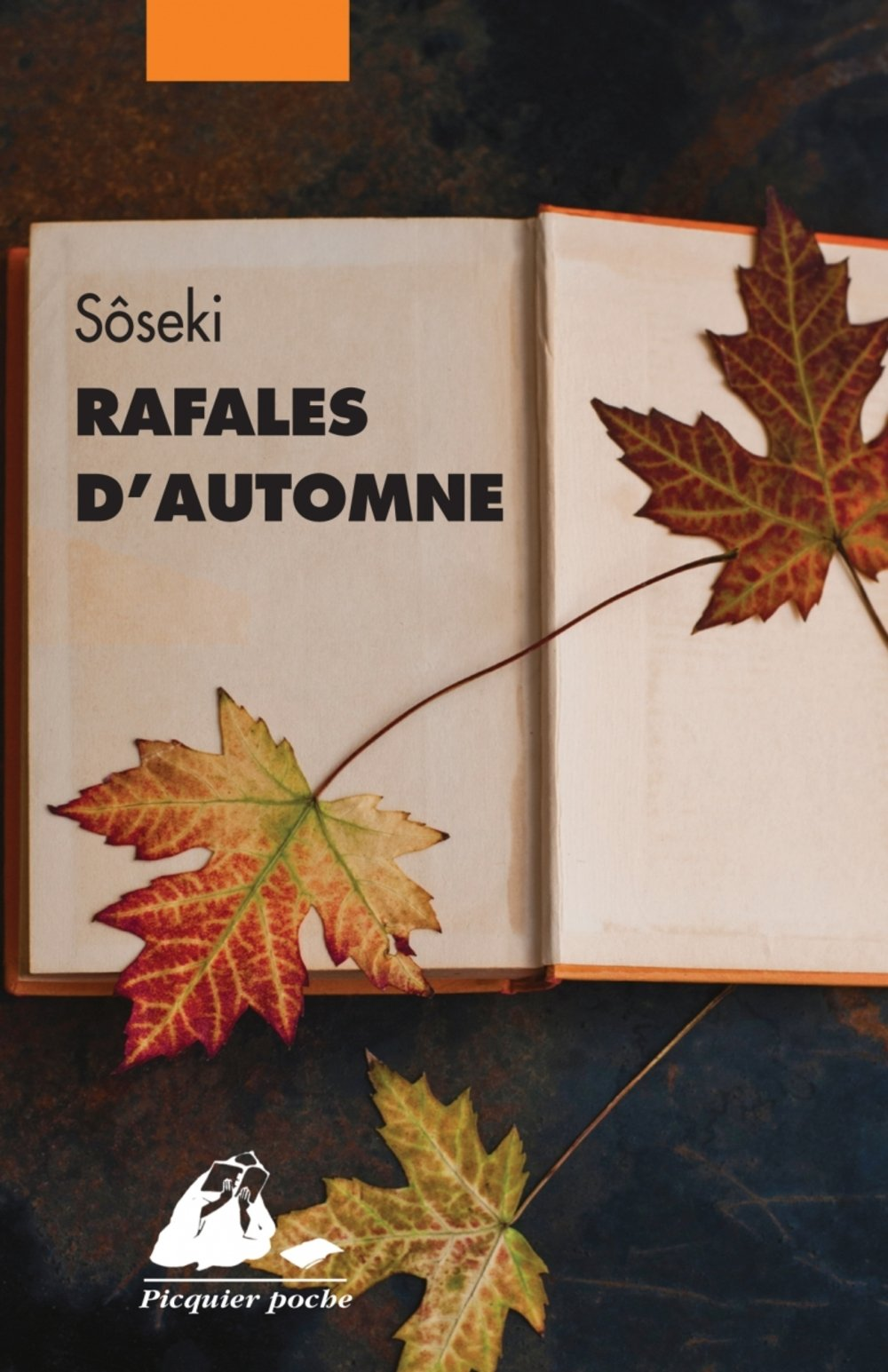 Rafales d'automne de Soseki Natsume