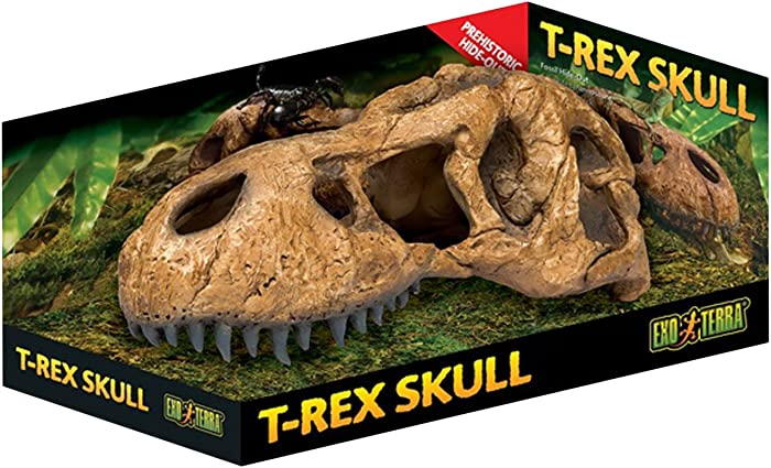 Top 9 Exo Terra Trex Skull Terrarium Decor