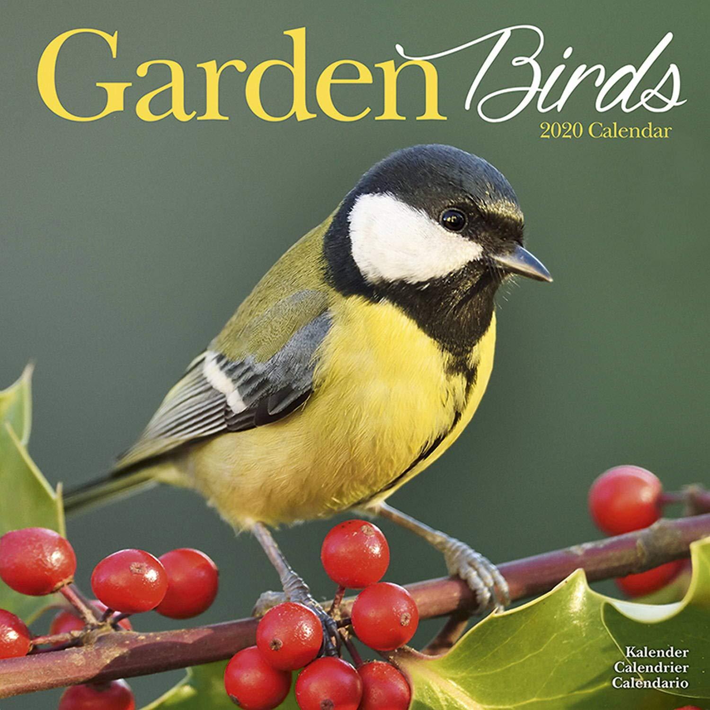 2020 Birds Wall Calendar