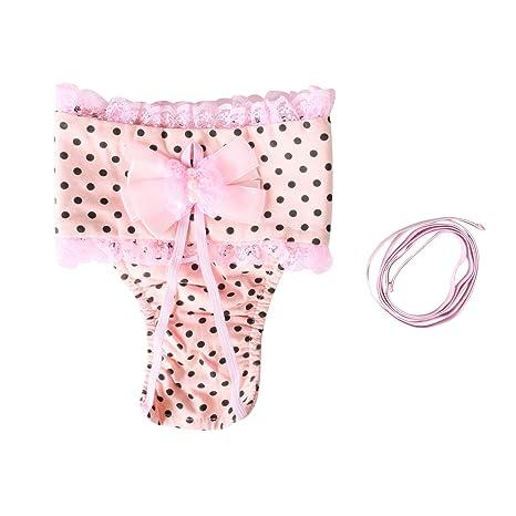 Pañales femeninos reutilizables del perro, abrigo fisiológico de las bragas de Menstrual del animal doméstico