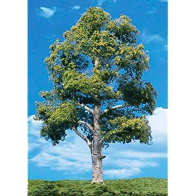 "Woodland Scenics Classics Tree, Waters Edge 8-9"" (2): Toys & Games"