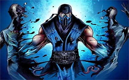 Twenty-threeMortal Kombat Sub-Zero Ninja Fighting 24X36 Inch Poster Print 5