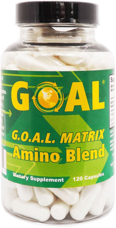 GOAL - G.O.A.L. MATRIX Amino Acids Complex 120 Capsules - Best NO Supplement Tablets L-Glycine L-Ornithine L-Arginine L-Lysine Combination Anti-Aging Blend - Nitric Oxide Boosters for Men and Women by GOAL Naturals