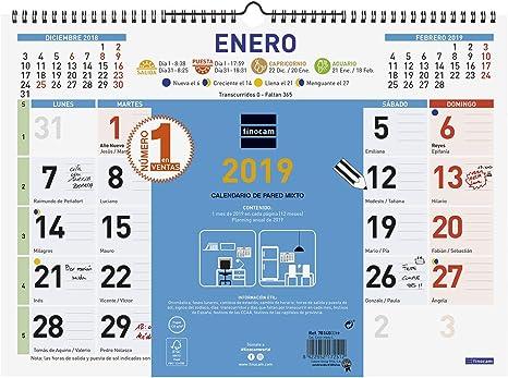 Finocam 781400019 - Calendario de pared 2019: Amazon.es: Oficina y ...