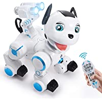 Sgile RC Interactive Robot Dog Toy