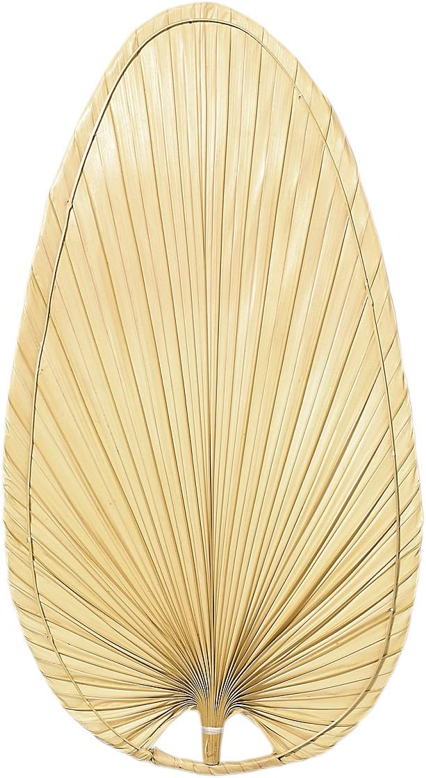 Set of 5 Fanimation ISP1 22-Inch Wide Oval Natural Palm Leaf Ceiling Fan Blade