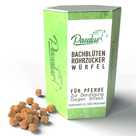 Caballos BACHMANN Flores Tubo Azúcar Dados en Ansiedad, Estrés y fogueo antiadherente rigidez – para