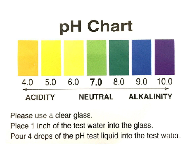 Ph Test Chart Bogasrdenstaging