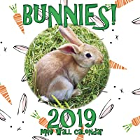 Bunnies! 2019 Mini Wall Calendar