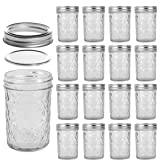 LEQEE Mason Jars 8 oz Mini Canning Jars with Silver Lids and Bands Regular Mouth Jelly Jar for Jam, Honey, Wedding…