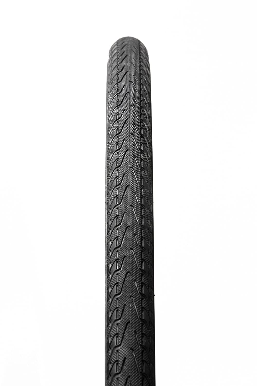 Panaracer Pasela Wire Bead Tire B076XZKDZ7