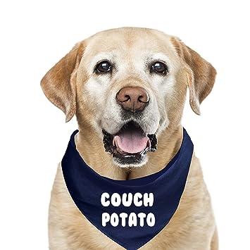 Amazon Com Couch Potato Fashion Printed Dog Bandana