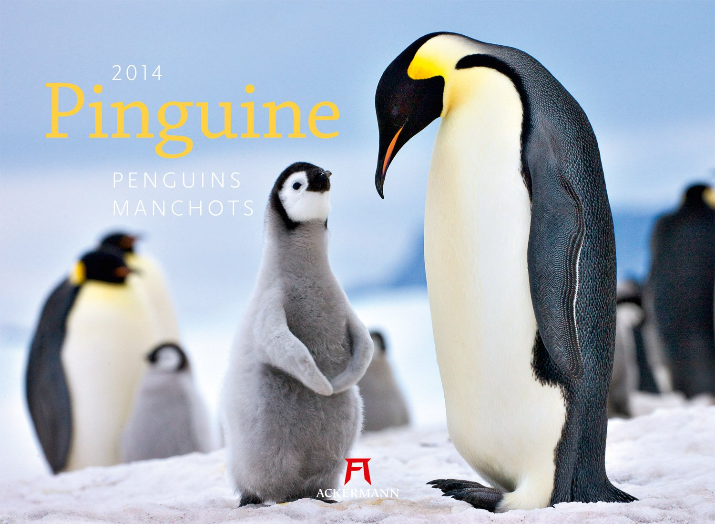 Pinguine 2014