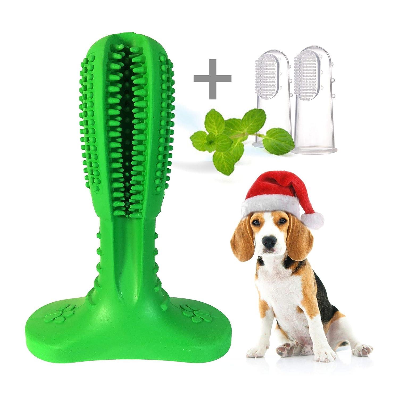 Flyingstork Dog Toothbrush Stick With 2 Dental Bristly Brushing Finger Upgraded 2019 Effective Dog Dental Care Teeth Cleaning Toy Tartar Remover
