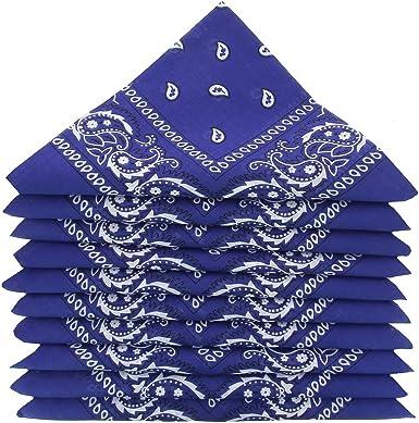 KARL LOVEN – Lote de pañuelos 100% algodón Paisley pañuelo fichu bandana – Lote de 600 unidades azul roy: Amazon.es: Ropa y accesorios