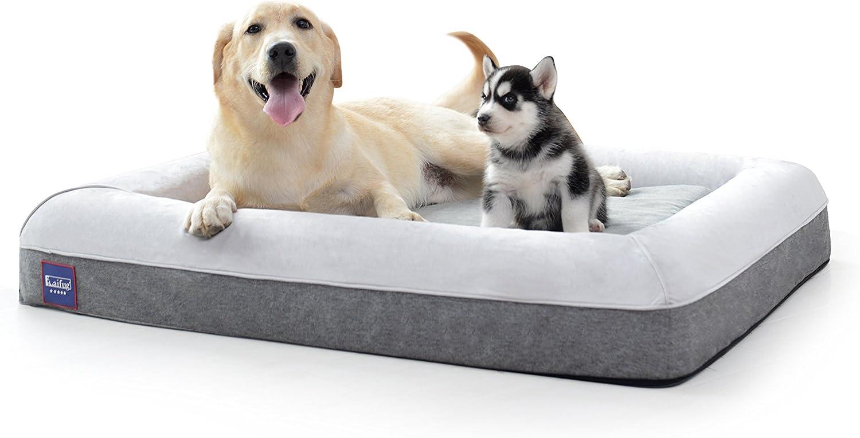 Dog posing on a large memory foam dog bed