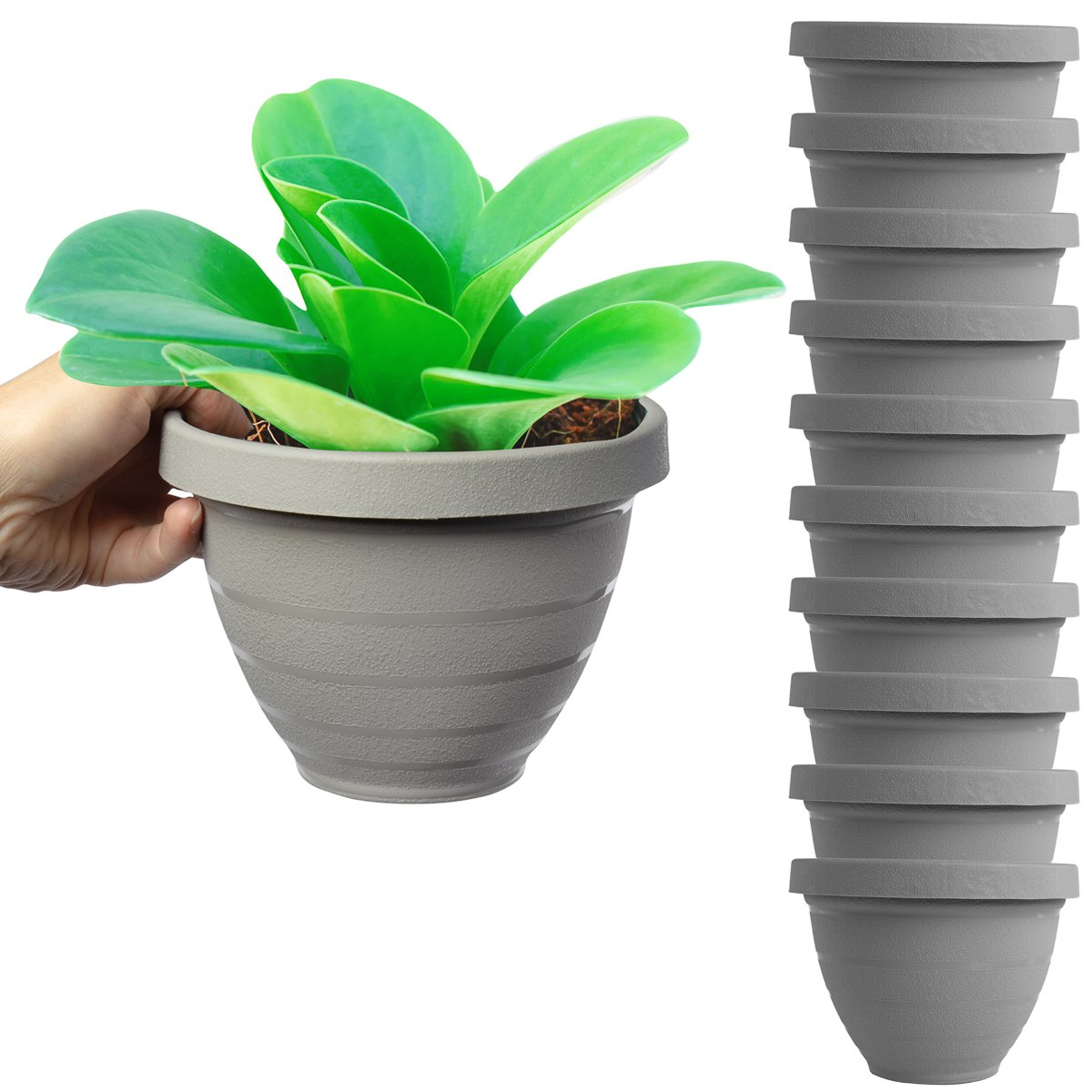 HC Companies 10 Pack 6 Inch Self Watering Planters for Indoor Plants Garden House Live Plant