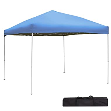 Green Garden Pop up Canopy Tent - 10 x 10 Outdoor Straight Leg Party Tent (Blue)