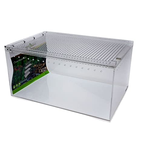 Reptile Insect Spider Acrylic Breeding Tank 300x200x150 Magnetic Lid