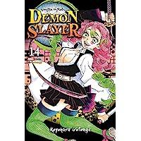 Demon Slayer N.14