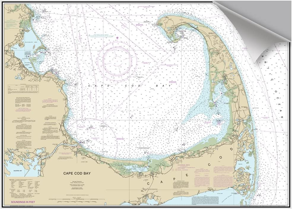 Amazon Com Maptech Cape Cod Bay Ma Decorative Nautical Chart