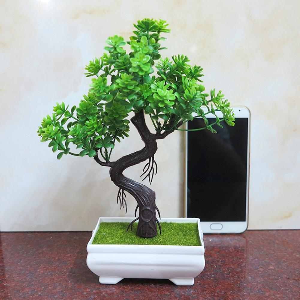 Cedro bonsai artificiale in vasetto Bonsai in vaso//Pianta bonsai Bonsai decorativo in vasetto 20 cm 3