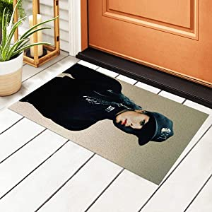 Meimall Janet Jackson Doormat Indoor Absorbent Entrance Rug Entryway Welcome Mats for Ideal for Kitchen Welcome Mat Outside High Traffic Area 15.7 by 23.6 Inc