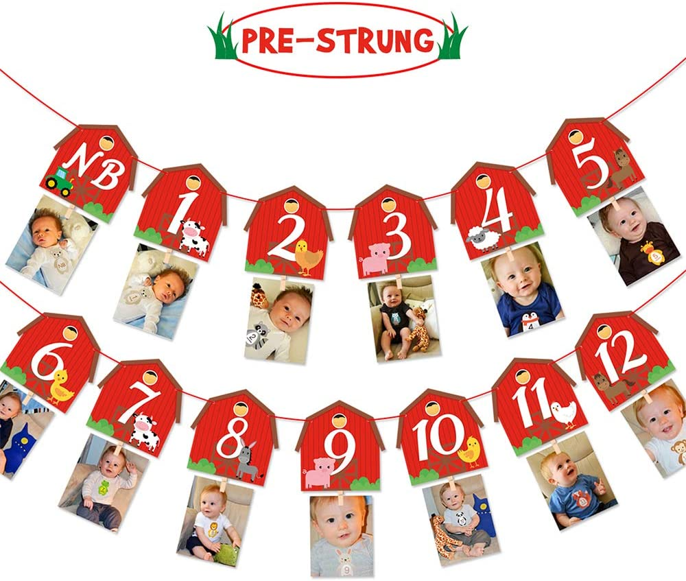 Baby Stickers Set of 1-12 Monthly Photograph Birthday Gift Party Milestone LO
