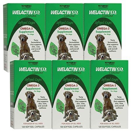 Welactin Canine Softgel Capsule, 120 Count, 6-Pack