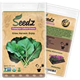CERTIFIED ORGANIC SEEDS (Appr. 550) - Champion Collard Greens - Collard Green Seeds, Open Pollinated - Non GMO, Non Hybrid Vegetable Seeds - USA