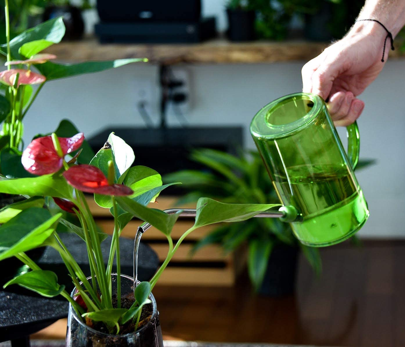 Brilliest Watering Can for Indoor/Outdoor Plants – Long Spout Stainless Steel – Plastic - Easy Measure - Modern - Succulents/Airplants/Houseplants/Outside Gardening (Green) : Garden & Outdoor