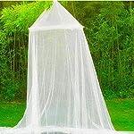 moustiquaire dome extérieur