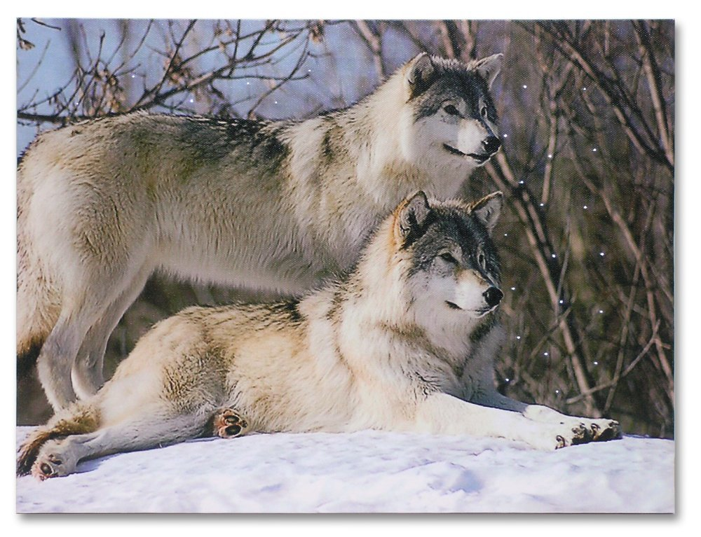 BANBERRY DESIGNS Wolf Canvas - LED Canvas Print with 2...
